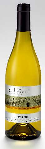 Galil Mountain - Viognier (Galil Label)